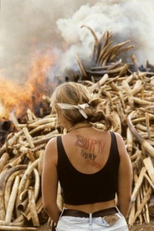Saba ivory burn - Sl
